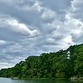 Green's Hill And The Bass River by Scott Hufford
