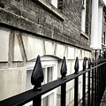 Iron Railings Detail  by Tom Gowanlock