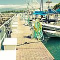 Lahaina Harbor Maui Hawaii by Sharon Mau