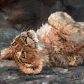 Lion Cub by David Stribbling