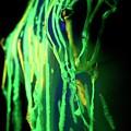 Liquid Latex by Pavel Jelinek