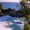 Mcway Falls by Soli Deo Gloria Wilderness And Wildlife Photography