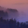 Melvin Bay Fog by Brenda Jacobs