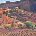 Mesa Shadows by Donald Maier