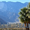 Palm Springs Welcome by Lisa Dunn