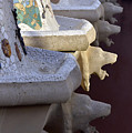 Park Guell by Svetlana Sewell