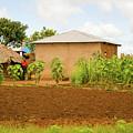 Rural Landscape In Tanzania by Marek Poplawski