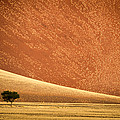 Sand Dune, Sossusvlei, Namib Desert by Panoramic Images