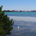 Sarasota Bay by Gary Wonning