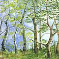 Four Seasons by Susan VanRooy