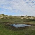 Small Lake In The Noordhollandse Duinreservaat by Chani Demuijlder