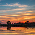 Sunset Reflections by Robert Bales