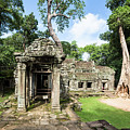 Ta Prohm Temple In Angkor by Didier Marti