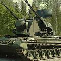 Tank by Lora Battle