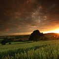 The Sunset by Angel  Tarantella