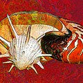 Underwater. Sea Shells. by Elena Kosvincheva