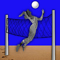 Vollyball Collection by Marvin Blaine