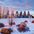 Winter by Viktor Birkus