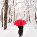 Winter Walk by Michael Shake