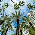 Miami Beach by Raul Rodriguez