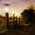 E-landscape by Malinda Spaulding