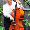 Female Cellist. by Oscar Williams