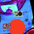 5-24-2015cabcdefghijklmno by Walter Paul Bebirian