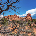 Arches National Park  by Steven Eyre Photography
