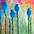 5 Bluebirds Of Happiness by Barbi  Holzmann