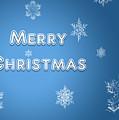 Christmas Card by Eleanor Bortnick