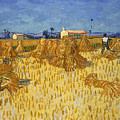 Corn Harvest In Provence by Vincent van Gogh