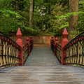 Crim Dell Bridge by Jerry Gammon