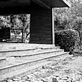 Derelict Building by Tom Gowanlock