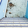Derelict Swimming Pool by Tom Gowanlock