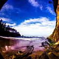 Fisheye Camera by Angus Hooper Iii