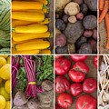 Fruit And Vegetable Collage by Ezume Images