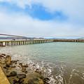 Golden Gate Bridge Crissy Field by Benny Marty