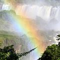 Iguazu Waterfalls by Alabama Valent