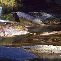Waterfall Swirl by Philip Derrico