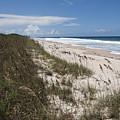 Juan Ponce De Leon Landing Site In Florida by Allan  Hughes