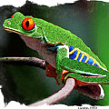 Red-eyed Leaf Frog by Larry Linton