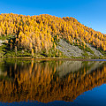 Reflections On Water, Autumn Panorama From Mountain Lake by Davide Guidolin