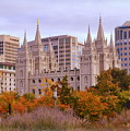 Salt Lake City Lds Temple by Nathan Abbott