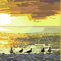 Seagulls At Sunset by Susan Spangler