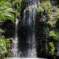 Waterfall by Karen Hart
