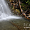 Waterfall, Quebec by Ted Kinsman