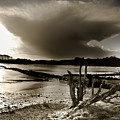 Winter Light by Heston Kelly