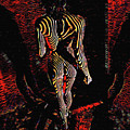 5360s-mak Abstract Zebra Striped Woman Strong Shoulders by Chris Maher