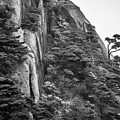 5782- Yellow Mountains Black And White by David Lange