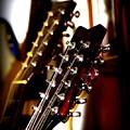 5796-001 Washburn - Guitar by Travis Truelove
